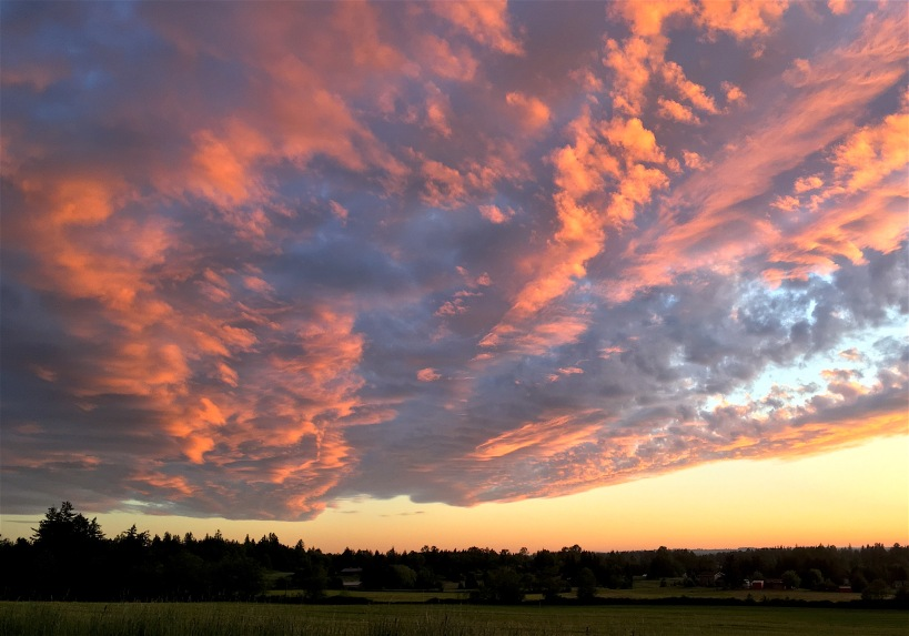 sunset251116