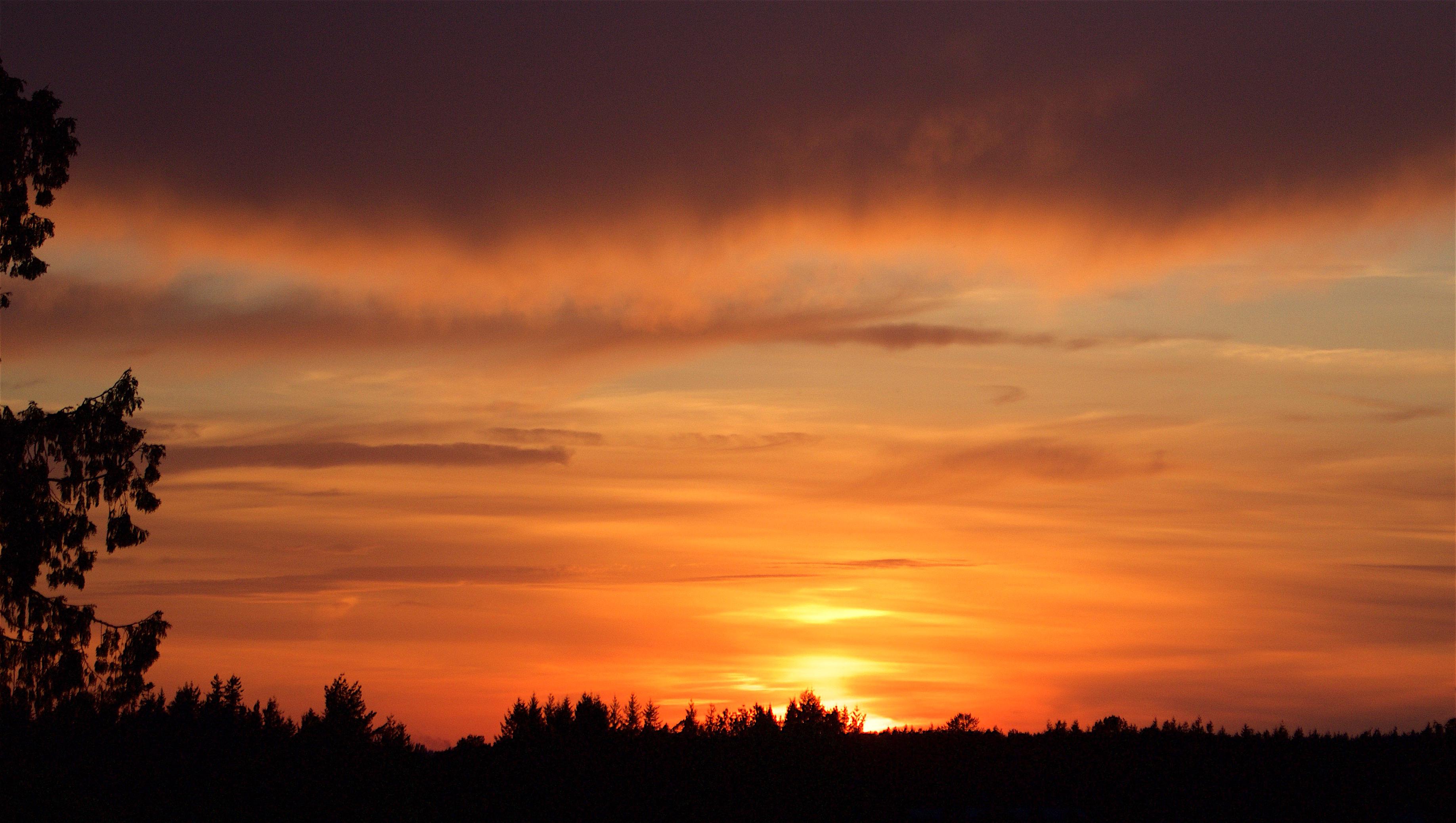 sunset41816