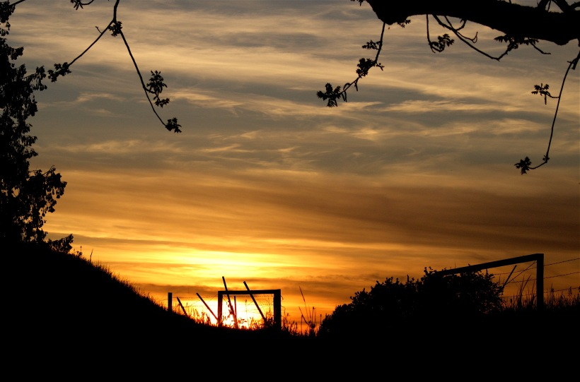 sunset43016