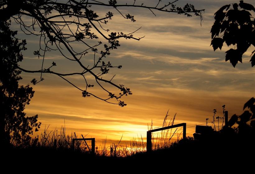 sunset430161