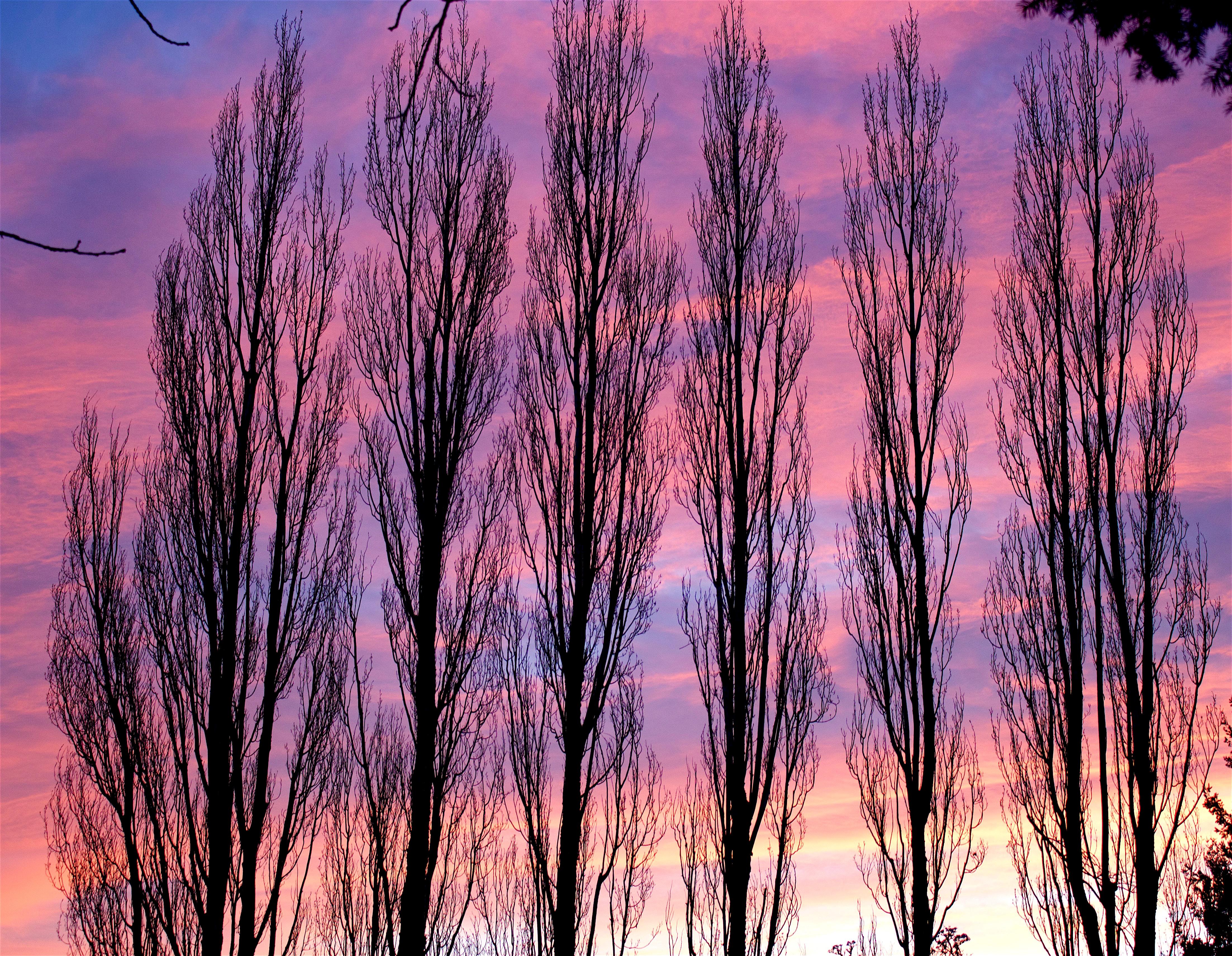 sunset329164