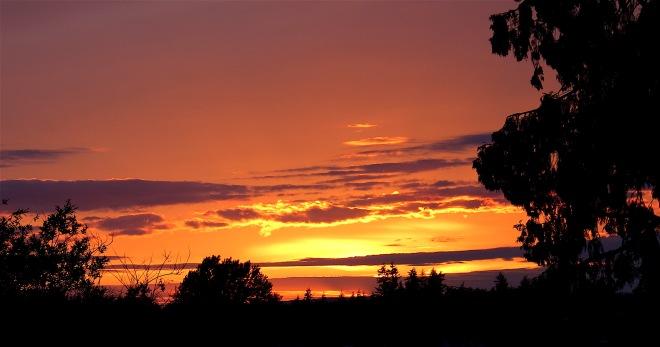 sunset52216