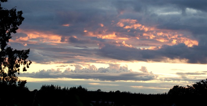 sunset611161