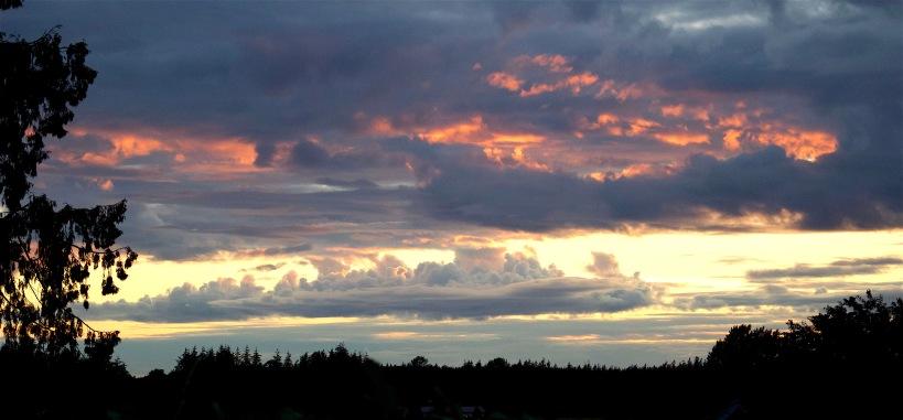 sunset611162