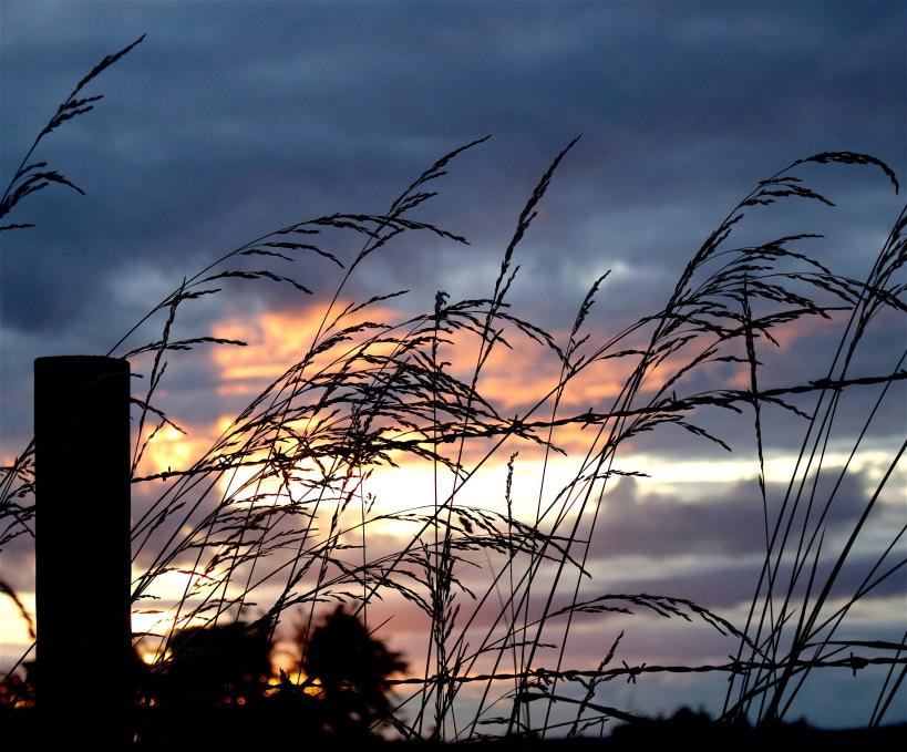 sunset611163