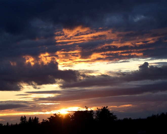 sunset611164