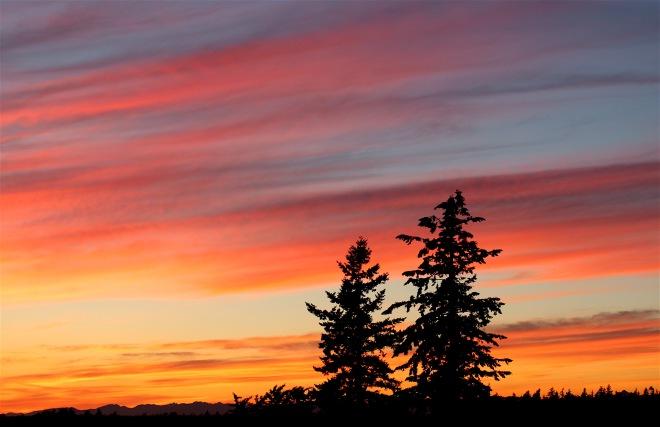 sunset62616