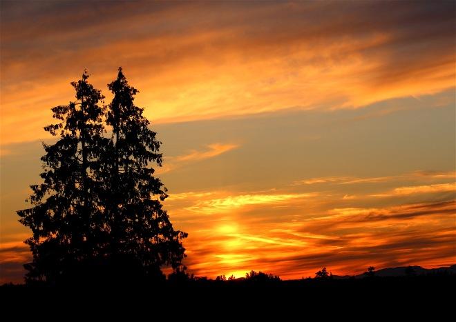 sunset626164