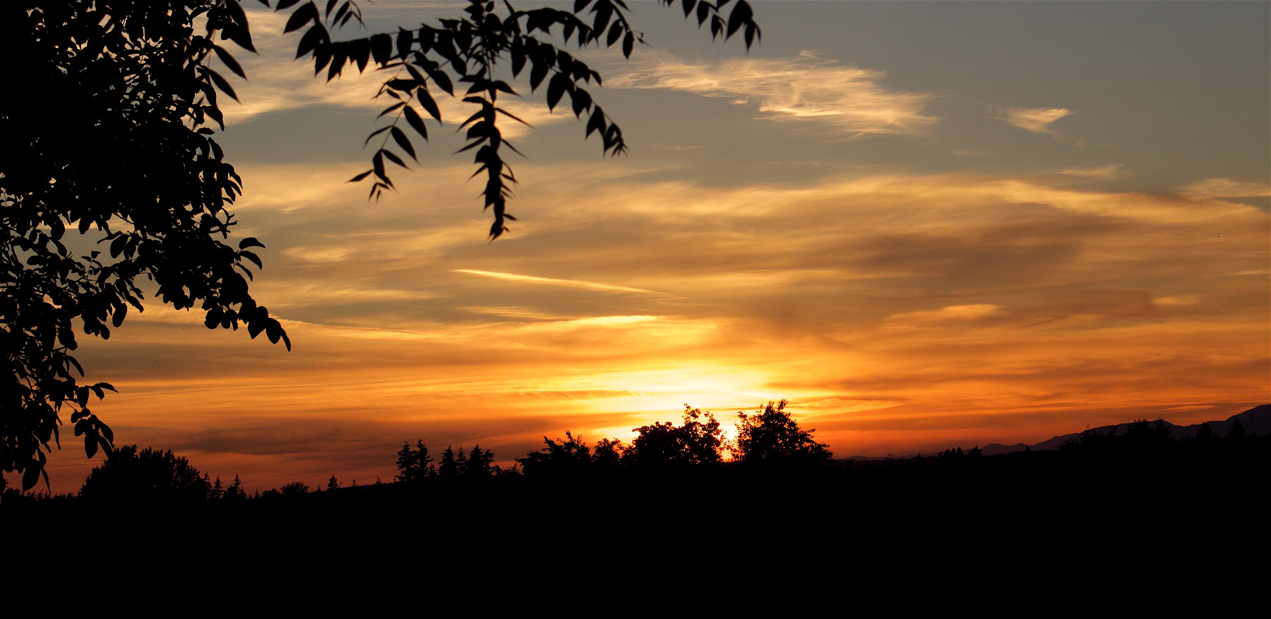 sunset6516