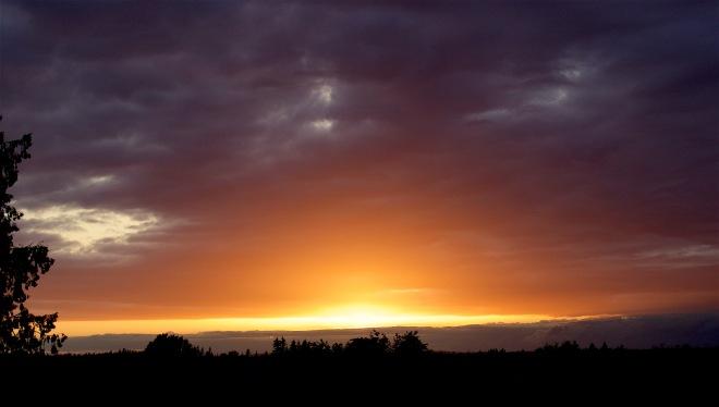 sunset68161