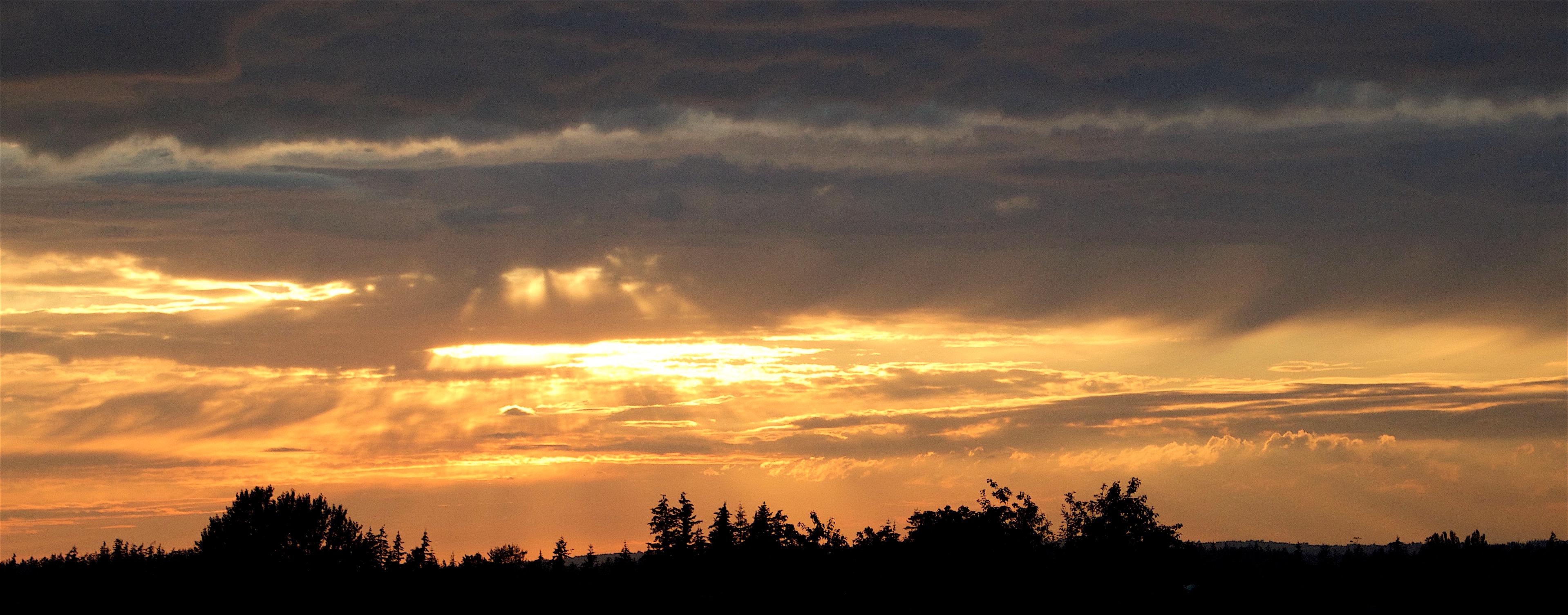 sunset69161