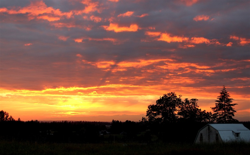 sunset691612