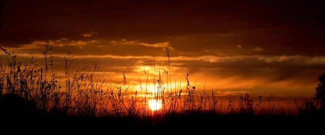 sunset69162
