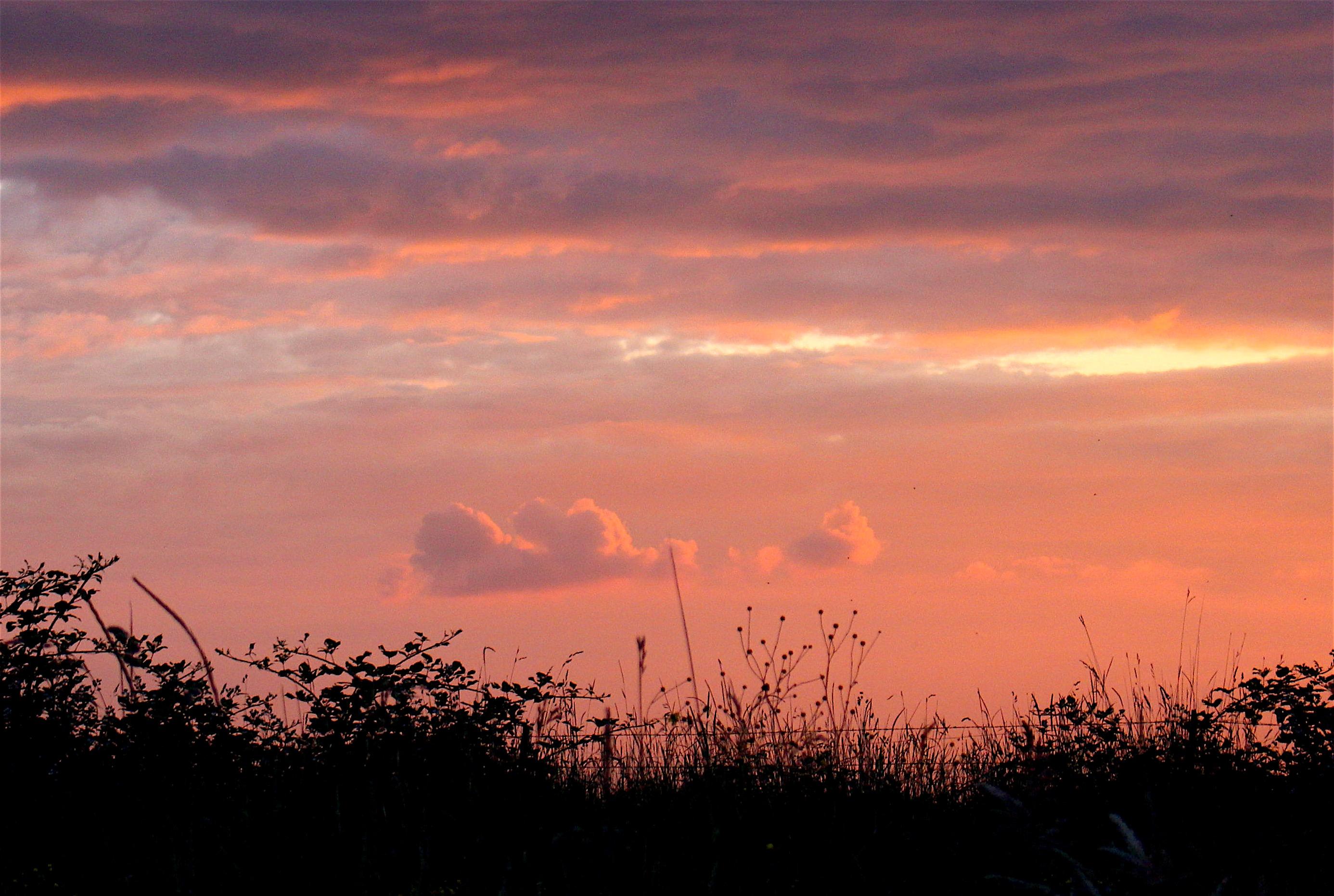 sunset69167