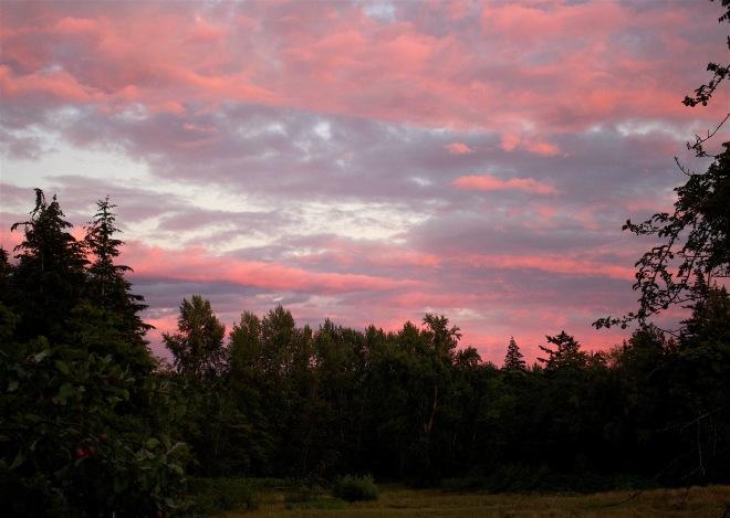 sunset714161