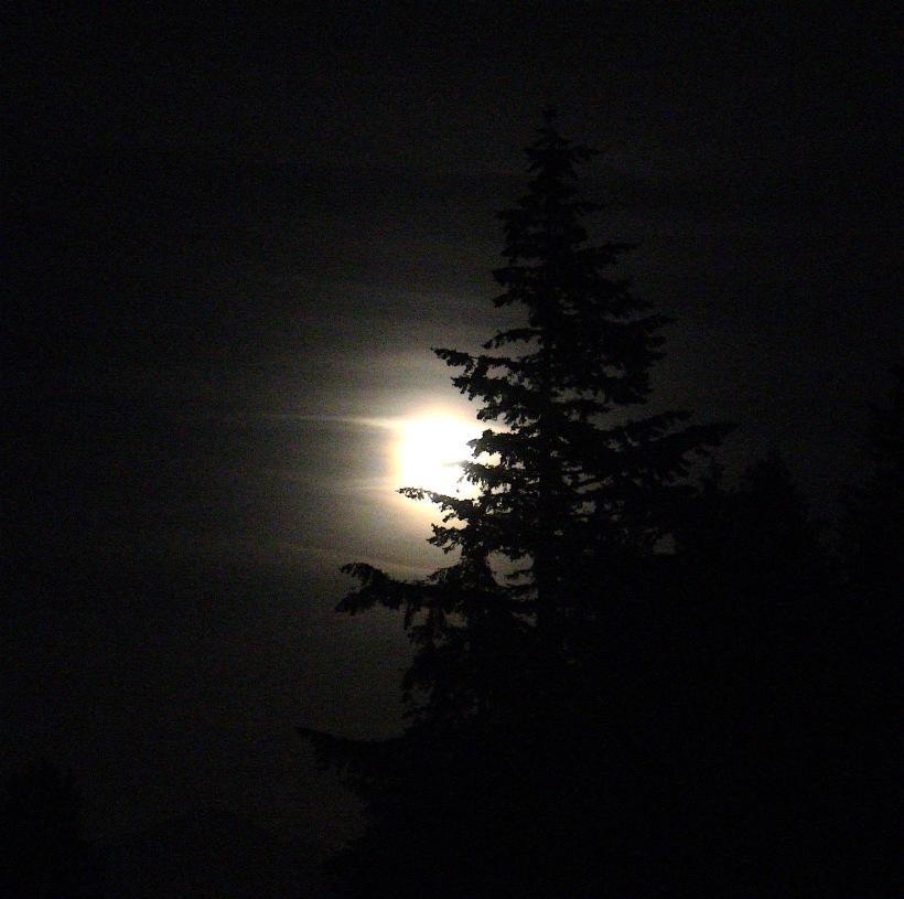 moonrise819