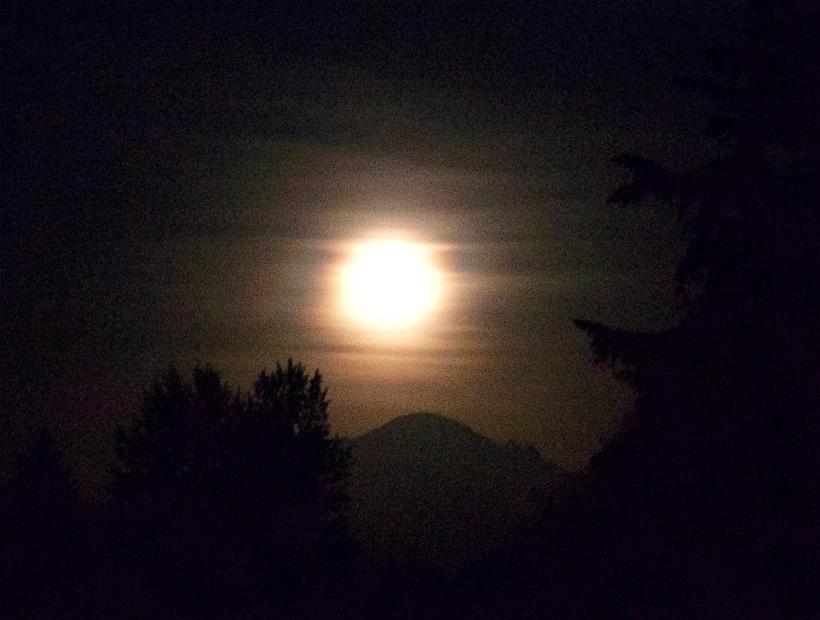 moonrisebaker