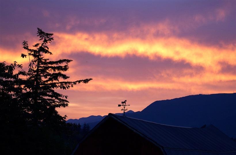 sunrise81316