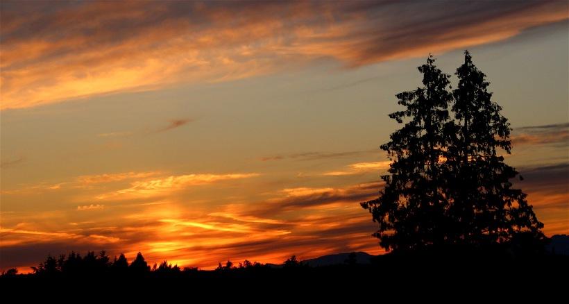 sunset626162