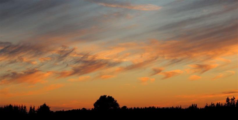 sunset626163