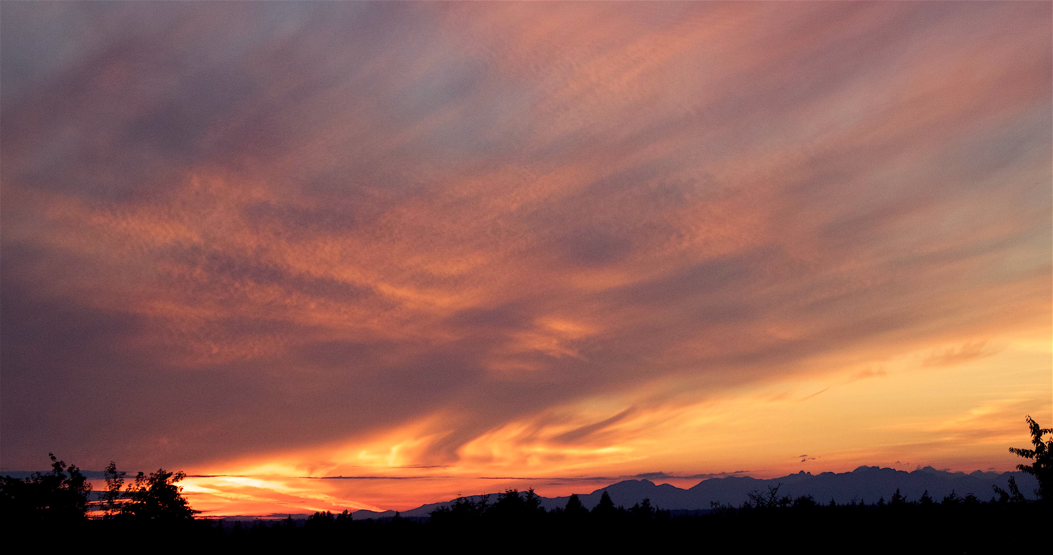 sunset76162
