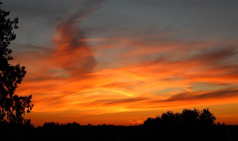 sunset81616
