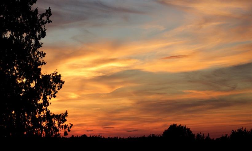 sunset825161
