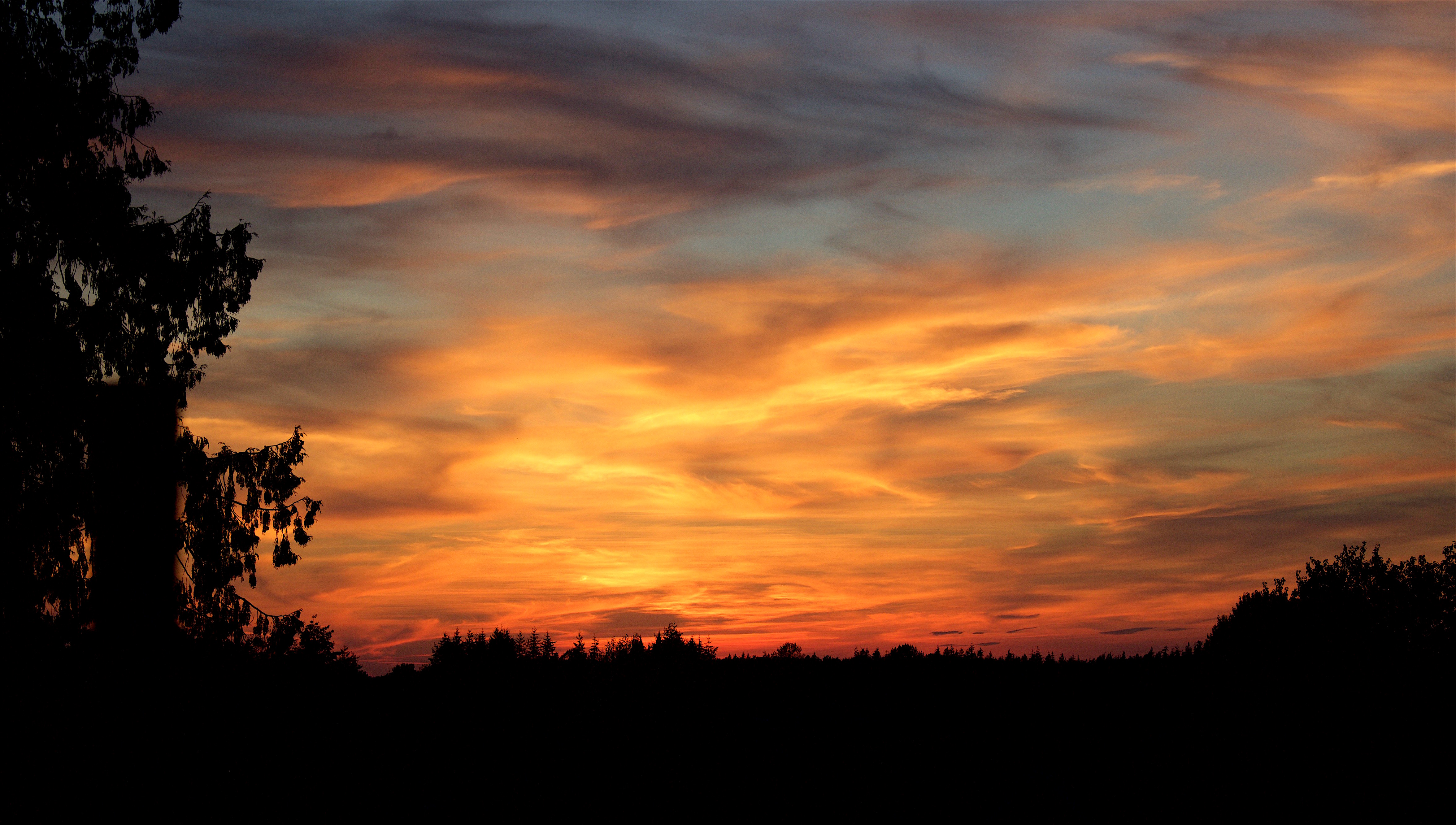 sunset825162