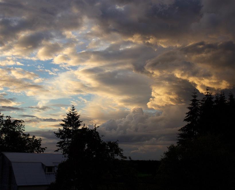 cloudstudy92163