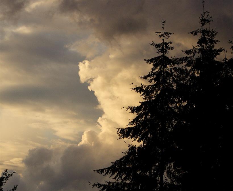 cloudstudy92164