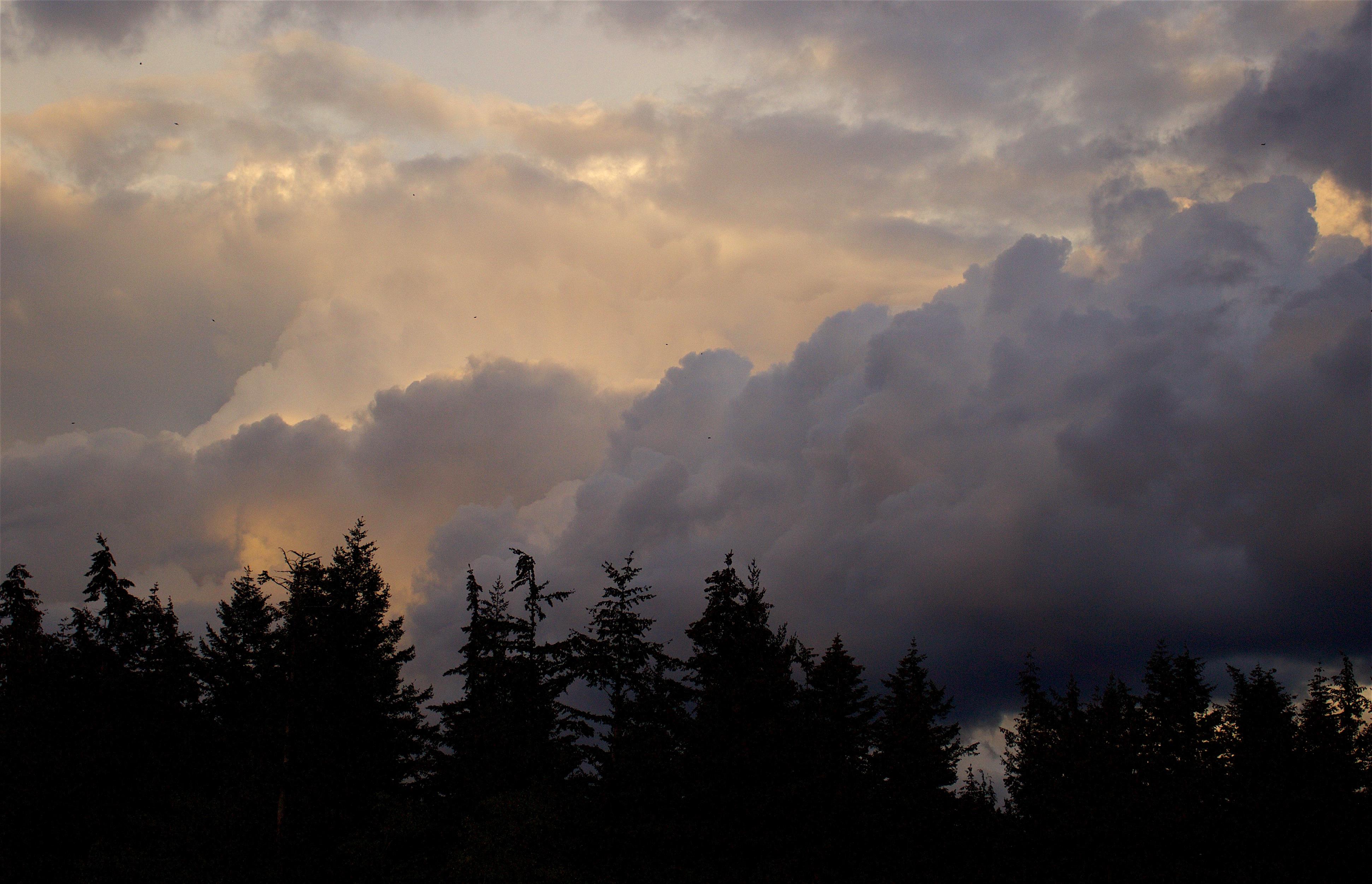 cloudstudy92166
