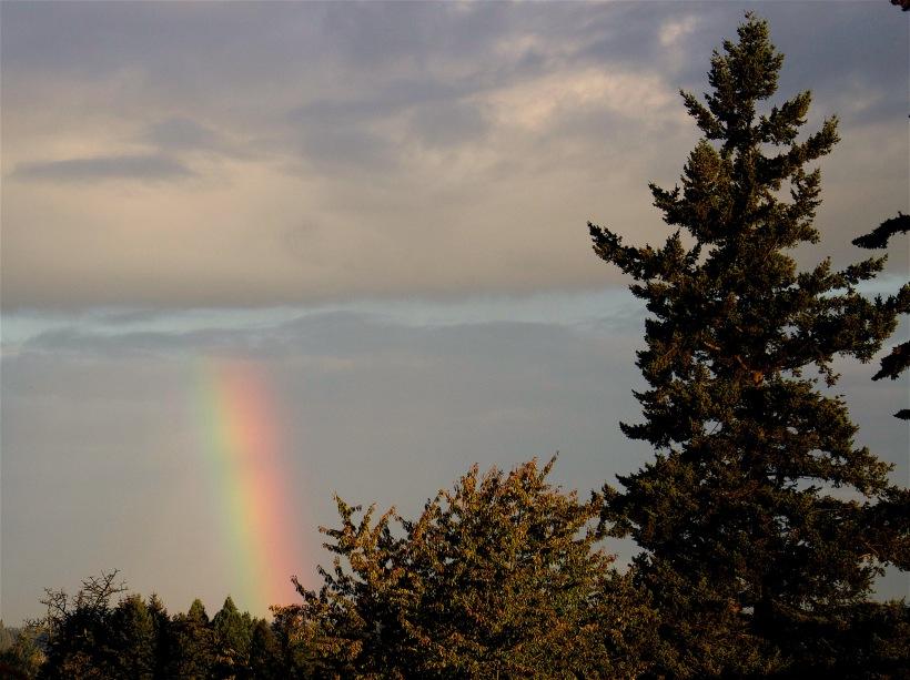 rainbow92016