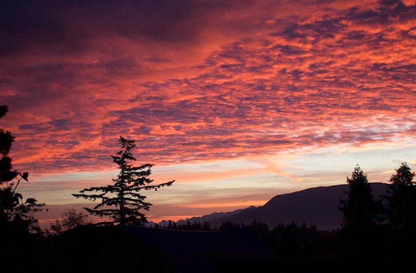 sunrise916164