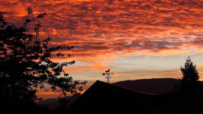 sunrise916167