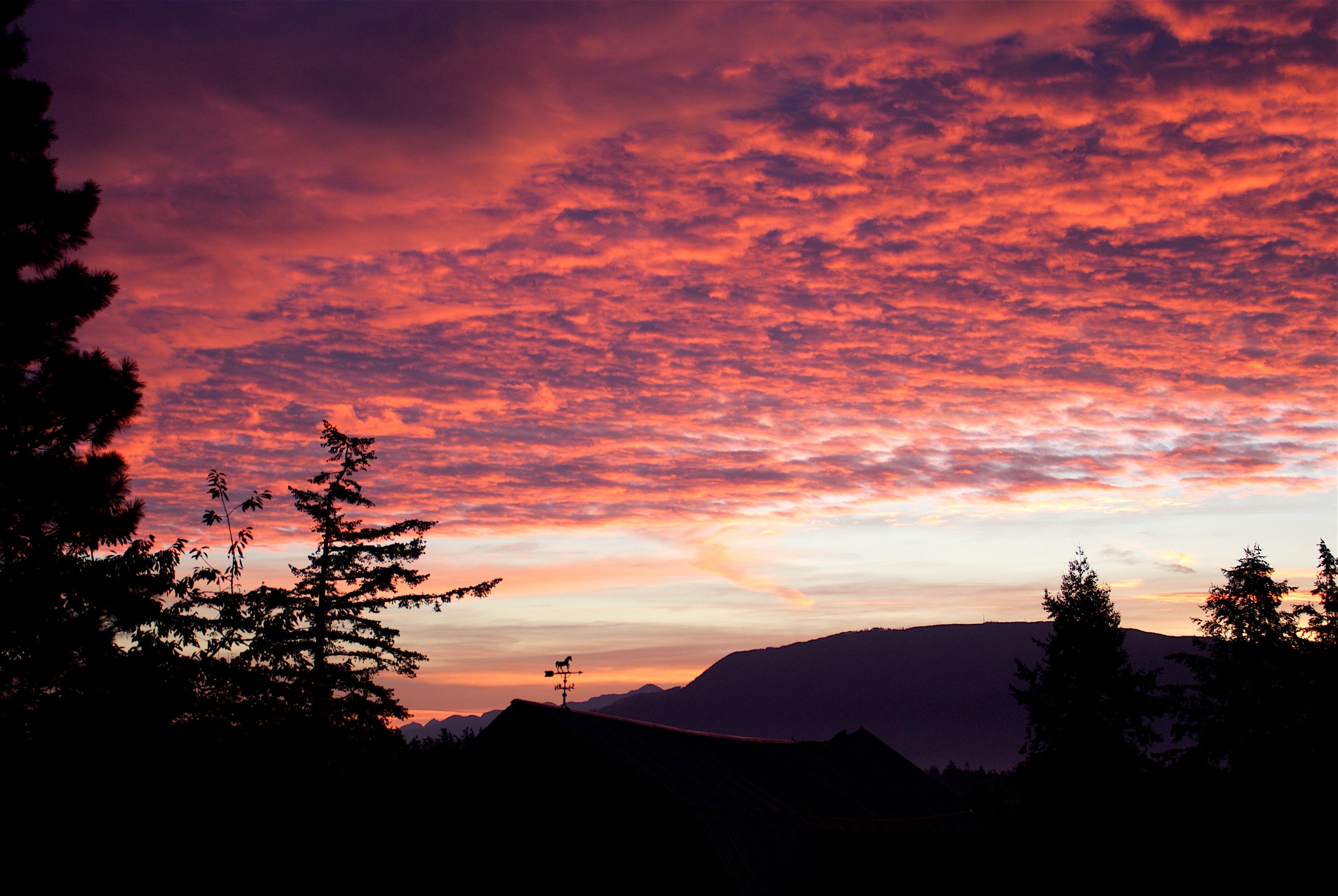 sunrise916169