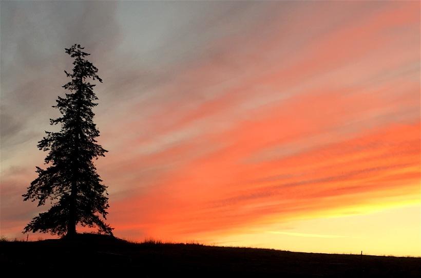 sunset92716