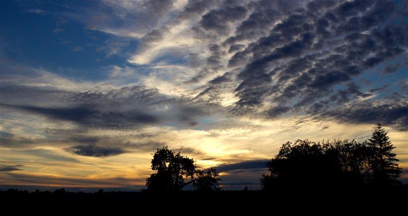 sunset98163