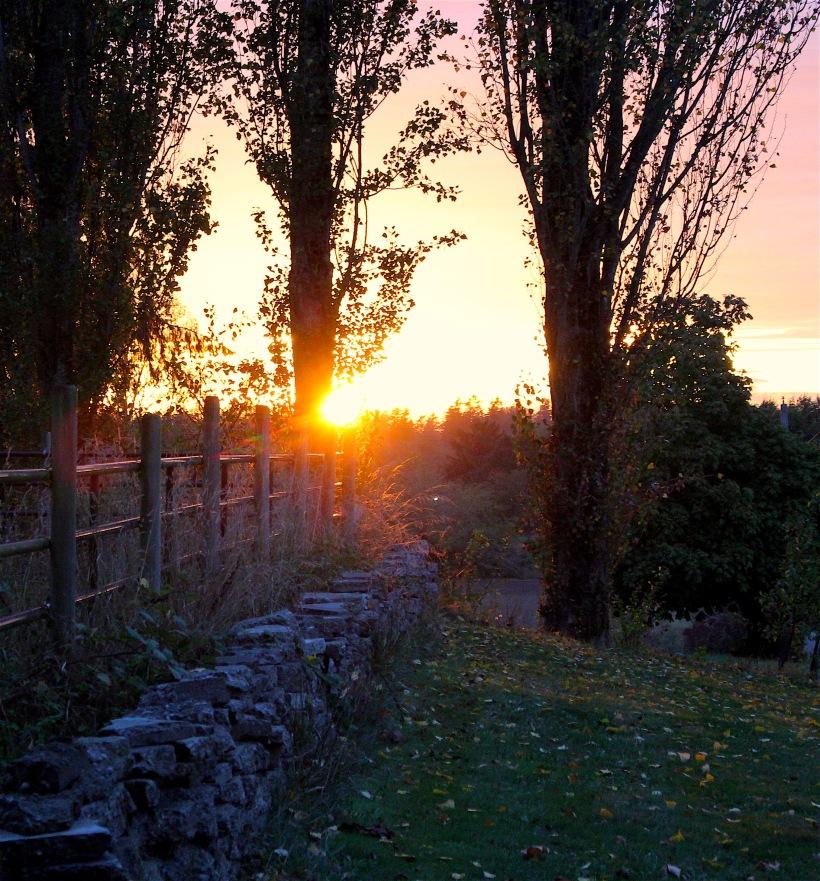 sunset926162