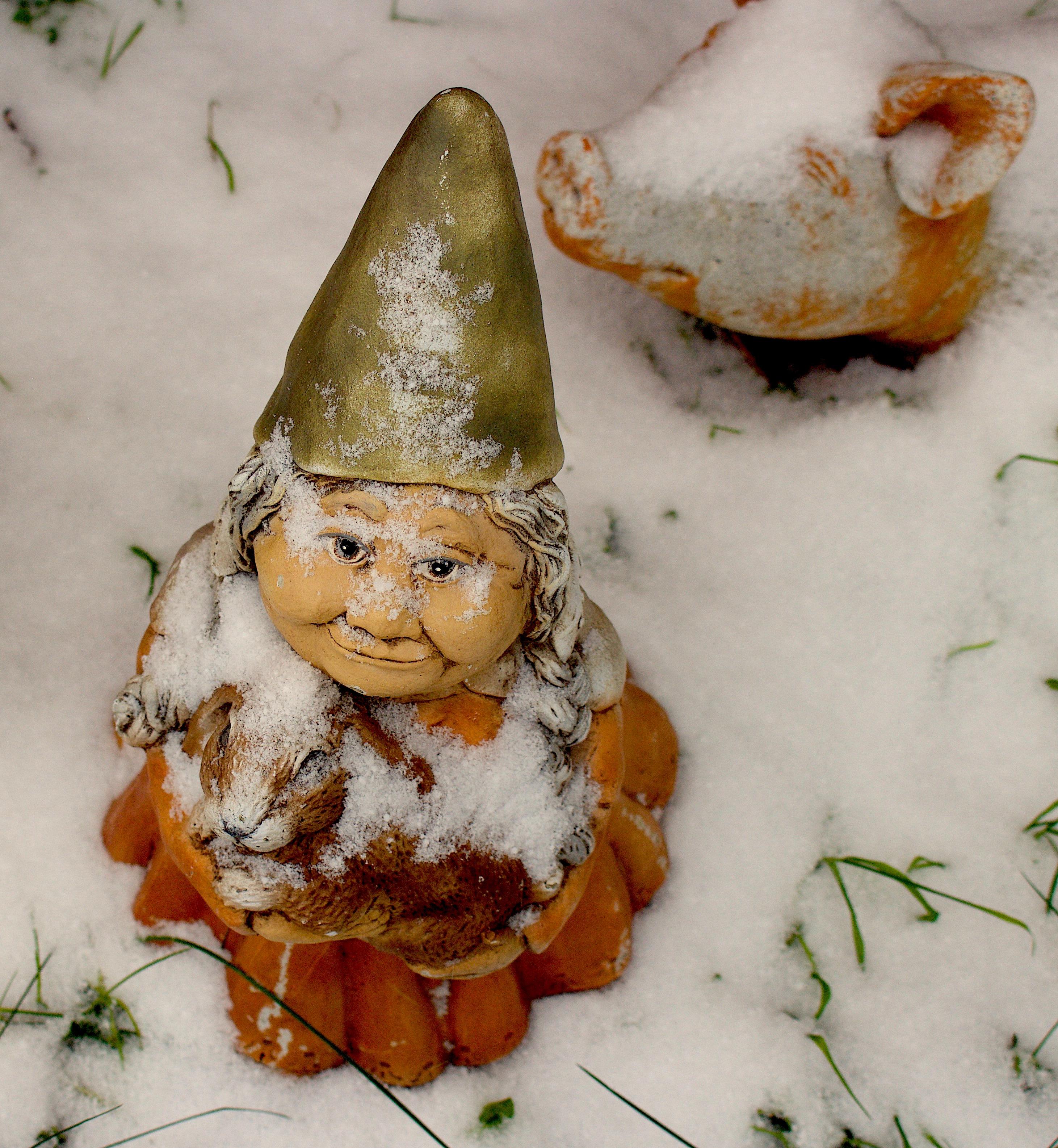 snowygnomes