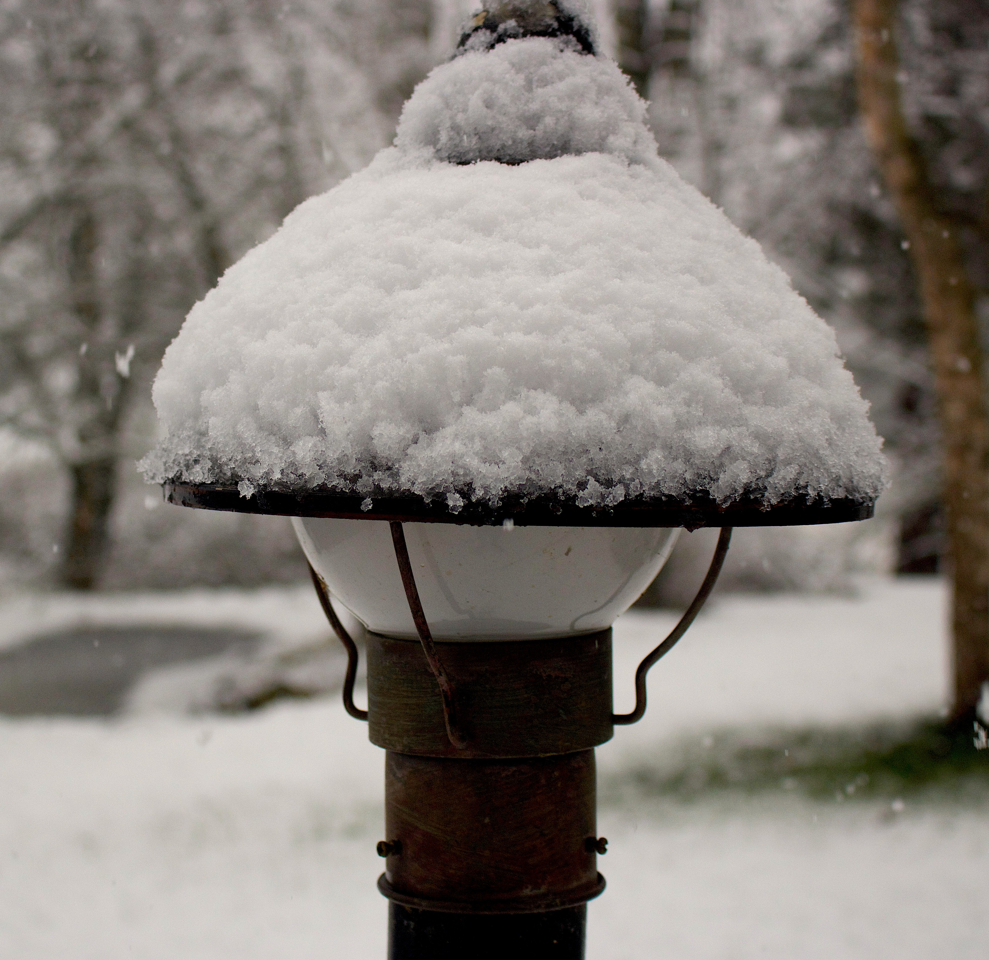 snowylamp