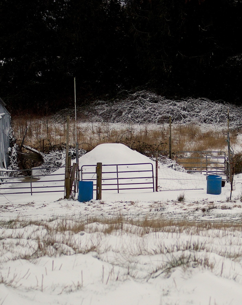 snowypile