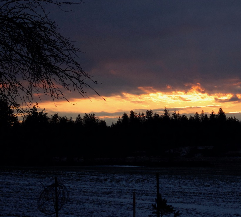sunset1217162