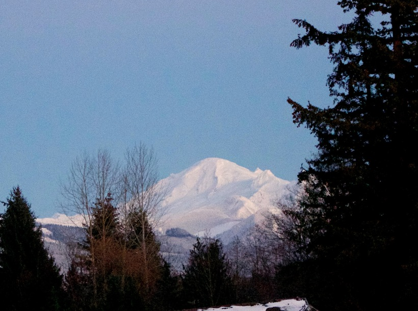 snowybaker121316