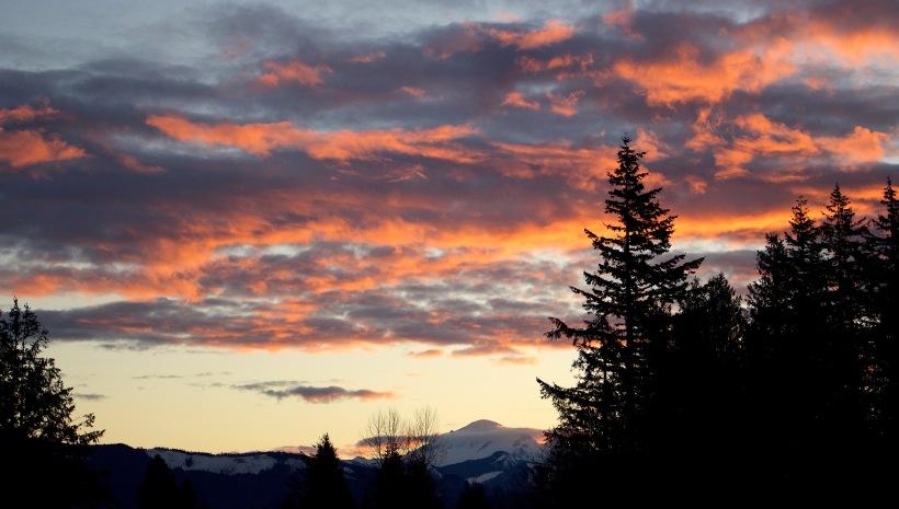 sunrise11517