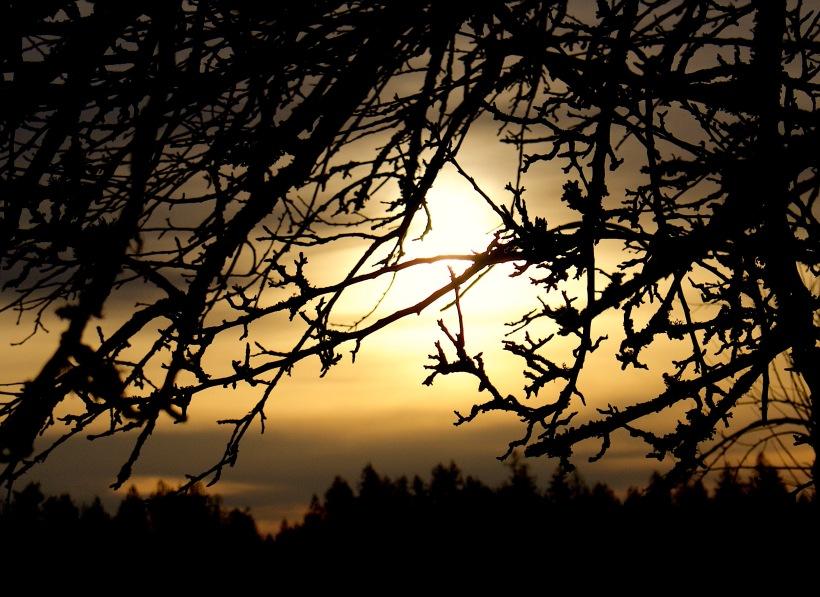 sunset114174