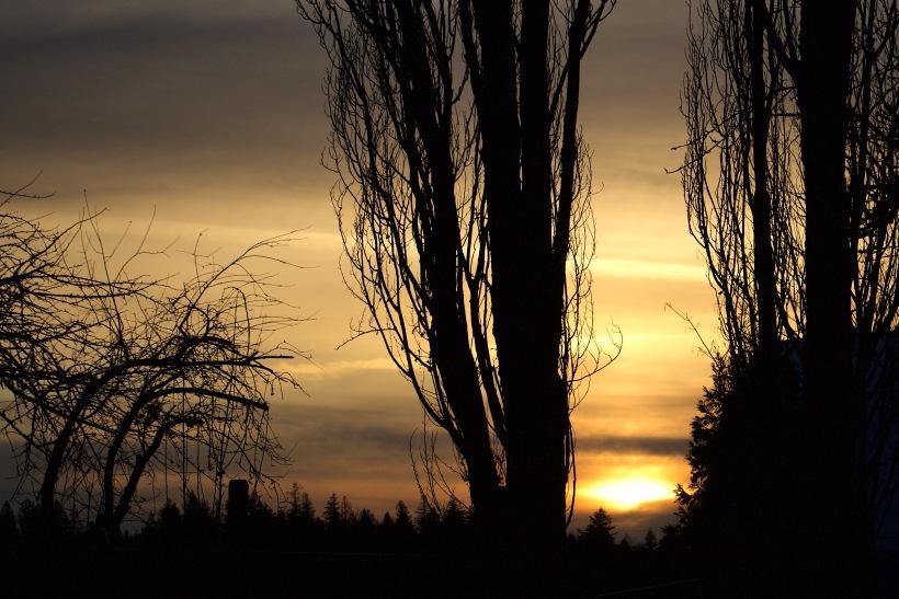 sunset114175