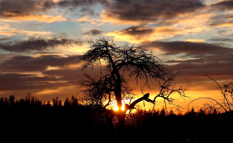 sunset121171