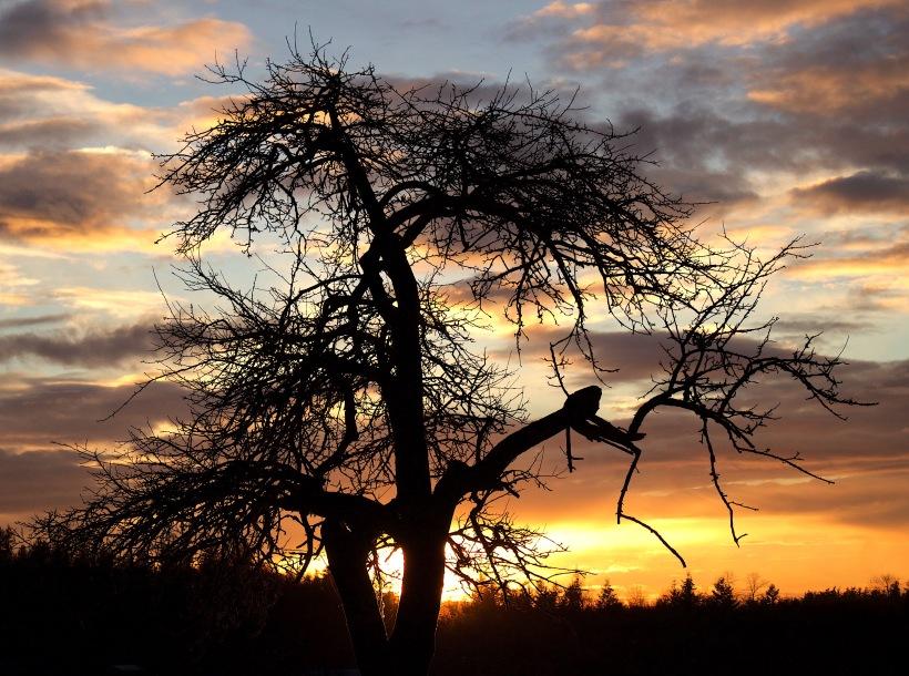 sunset121172