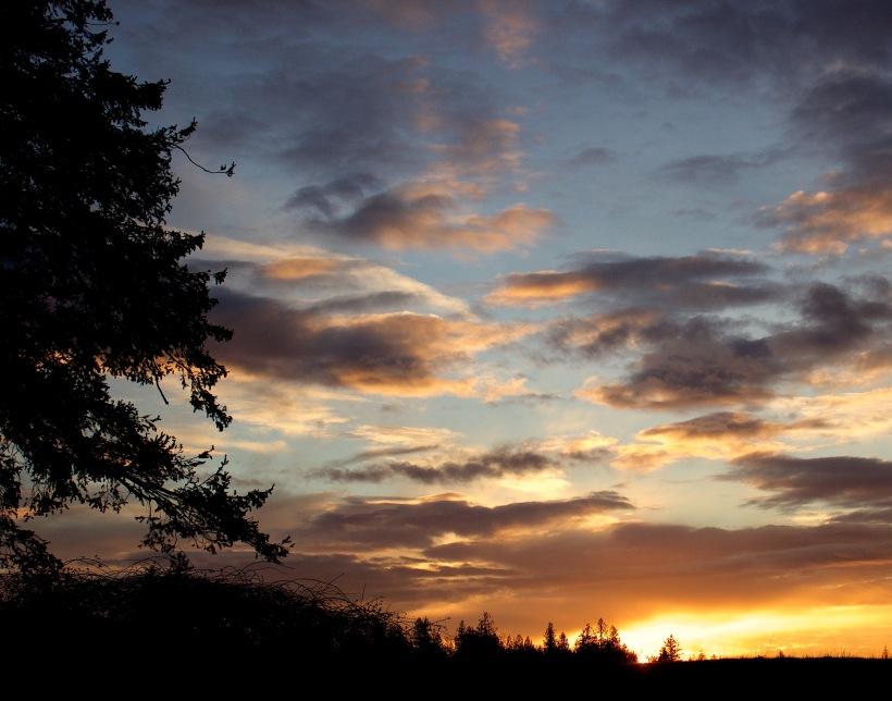sunset121175