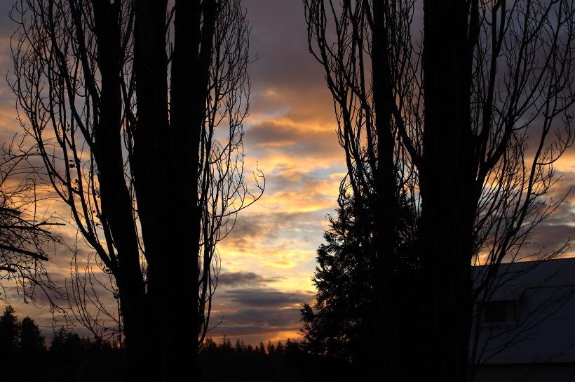 sunset121177